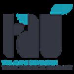 Turk-Alman-universitesi-logo